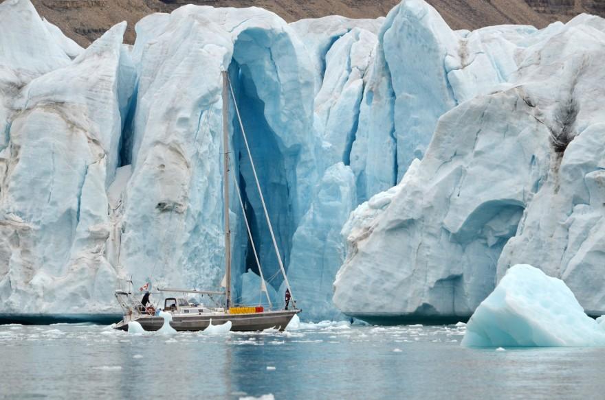 Acaleph devant le Glacier à Croker Bay